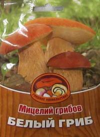 Как сделать свою грибницу